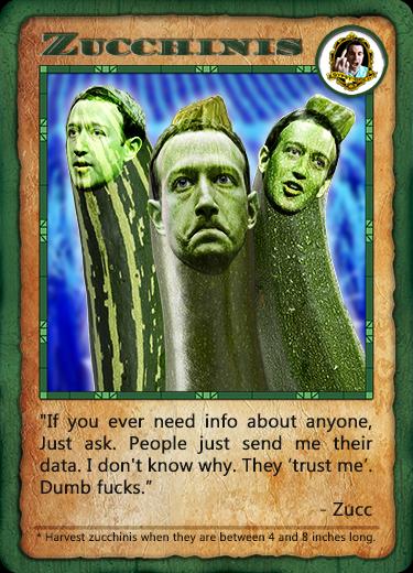 Bitcorn Crops - ZUCCHINIS
