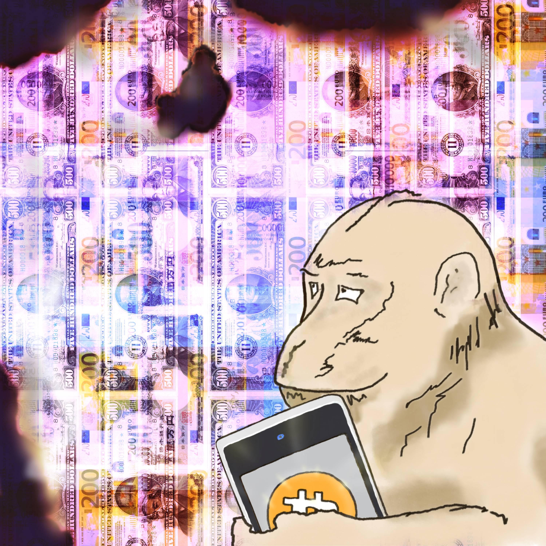 Freeport - Monkeyinspired