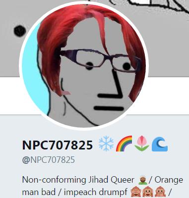 NPCs - NPCS.NPC707825